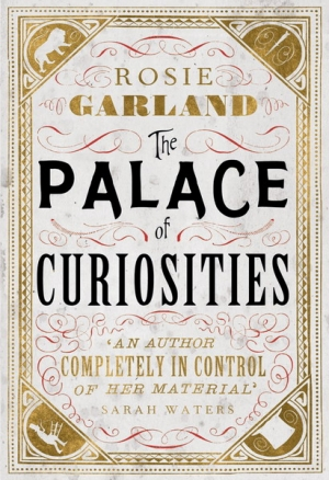 The Palace of Curiosities cover